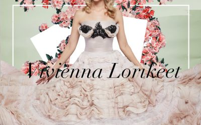 Vivienna Lorikeet