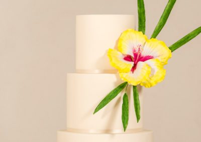 Cakes by Tash