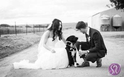 Spoilt Weddings